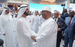 Photo: UAE VP meets Mali President