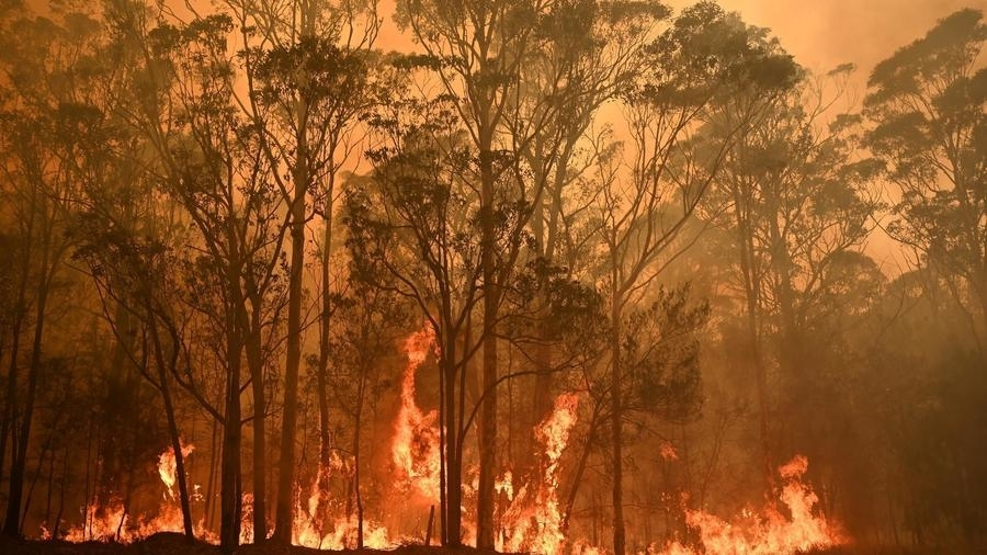 Photo: Bushfire crisis hit 75% of Australians