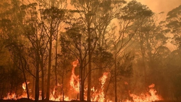 Photo: Bushfire crisis hit 75% of Australians