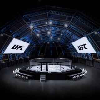 Photo: Abu Dhabi's Yas Island to host historic 'UFC Fight Island'