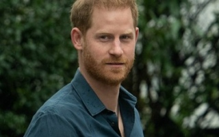 Photo: 'He was adamantly opposed': Prince Harry originally turned down exit review offer