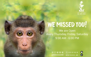 Photo: Al Ain Zoo reopens tomorrow with safety in mind